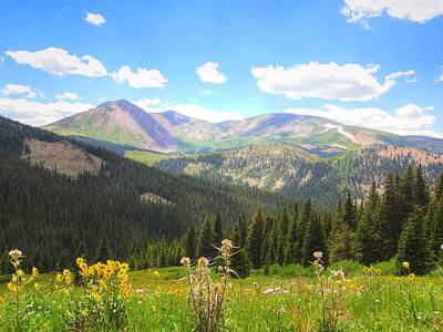 Art Print featuring the photograph Boreas Pass Summer by Lanita Williams