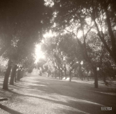 Sepia Tone Photograph - Borghese Gardens Path by Beverly Brown
