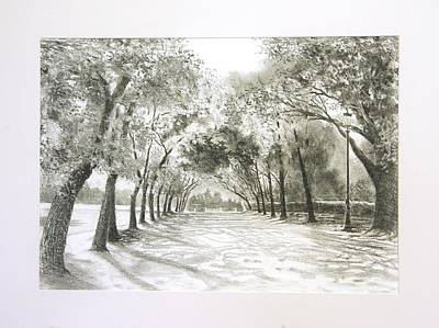 Borghese Painting - Borghese Park Rome by Peter Livens