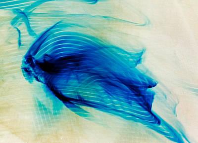 Abstract Composition Digital Art - Borrow A Spirit Light 2013 James Warren by James Warren