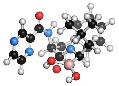 Molecule Photograph - Bortezomib Cancer Drug Molecule by Molekuul