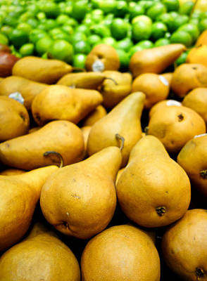 Photograph - Bosc Pears And Limes by Robert Meyers-Lussier
