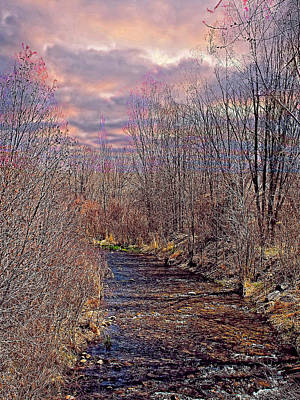 Mixed Media - Bosque Evening by Charles Muhle