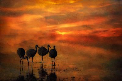 Bosque Sunset Art Print by Priscilla Burgers