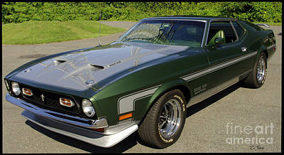 Photograph - Boss 351 Mustang by James C Thomas