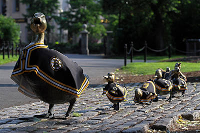 Photograph - Boston Bruins Ducklings by Juergen Roth