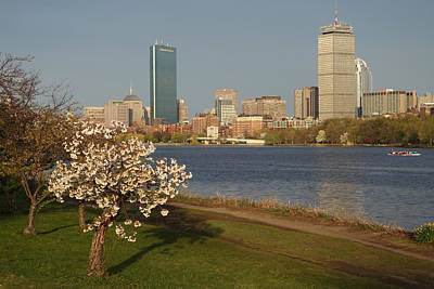 Photograph - Boston Charles River On A Spring Day by Toby McGuire