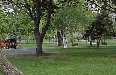 Mistletoe - Boston Common by James Connor