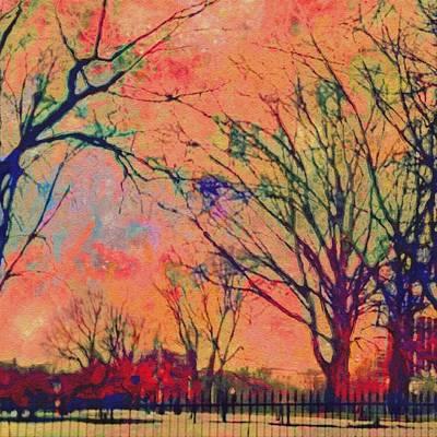 Digital Art - Boston Commons In Tangerine - Square by Lyn Voytershark