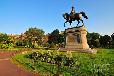 Boston Public Garden Art Print by Catherine Reusch Daley
