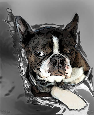 Boston Terrier.  Channeling Peter Lorre Art Print by Peter Mix