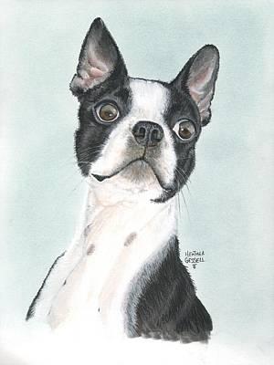 Boston Terrier Art Print by Heather Gessell
