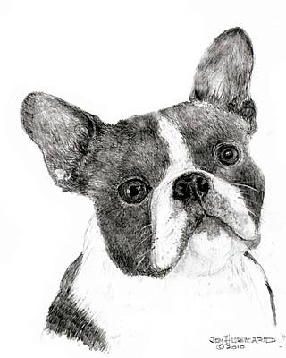 Art Print featuring the drawing Boston Terrier by Jim Hubbard
