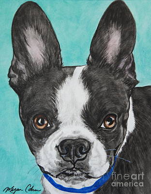 Wall Art - Painting - Boston Terrier by Megan Cohen