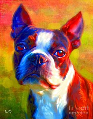 Boston Terrier Portrait Art Print by Iain McDonald
