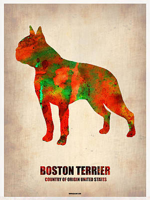 Puppy Digital Art - Boston Terrier Poster by Naxart Studio