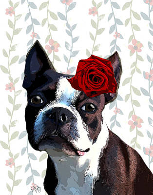 Boston Terrier With A Rose On Head Art Print