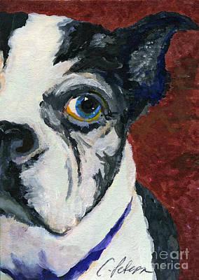 Boston Terrior Dog. Lulu 2010 Aceo Art Print by Cathy Peterson
