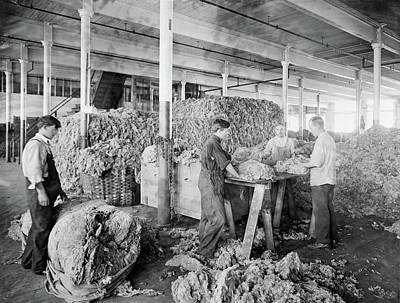 Photograph - Boston Yarn Factory, C1912 by Granger