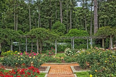 Botanical Gardens - Birmingham Alabama Art Print by Mountain Dreams