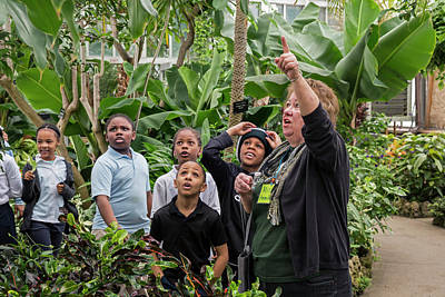 African-american Photograph - Botanical Greenhouse School Trip by Jim West