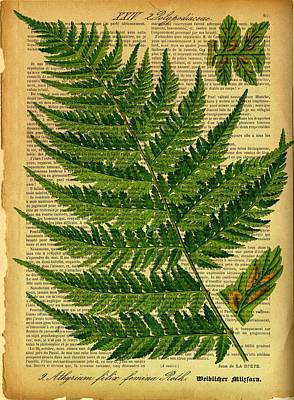 Digital Art - Botanical Print On Old Book Page by Lilia D