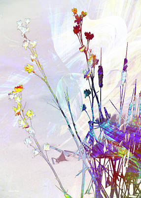 Digital Art - Botanical Rainbow by Shawna Rowe