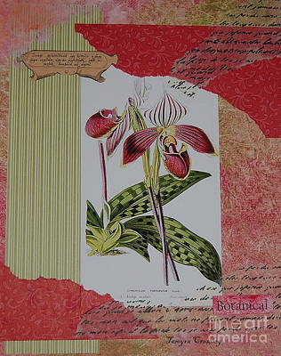 Painting - Botanical Study by Tamyra Crossley