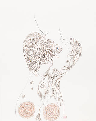 Drawing - Botanicalia Camilla by Karen Robey