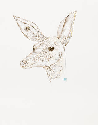 Drawing - Botanicalia Deer by Karen Robey