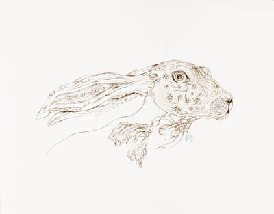 Drawing - Botanicalia Jack Rabbit-sold by Karen Robey