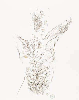 Drawing - Botanicalia Jessica by Karen Robey