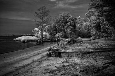 Photograph - Botany Bay 0010 by Donald Brown