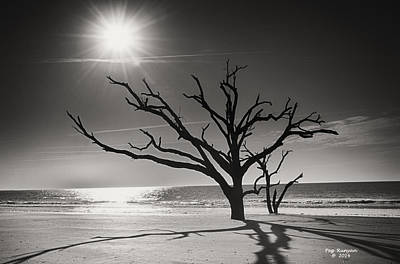 Photograph - Botany Bay Beach Black And White by Peg Runyan