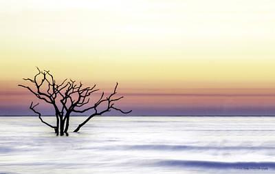 Botany Bay Sunrise Art Print by Kathy Ponce