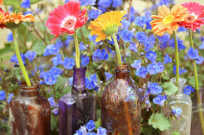 Photograph - Bottle Bouquets by Cathie Richardson