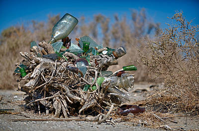 Photograph - Bottle Bush by Scott Campbell