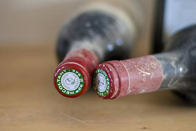 Table Wine Photograph - Bottle Necks by Georgia Fowler