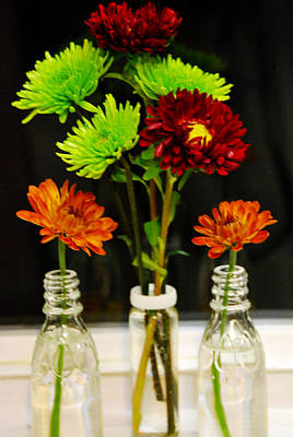 Art Print featuring the photograph Bottled Flowers by Linda Segerson