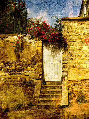 Photograph - Bougainvilla At The Gate Paris France by Bob Coates