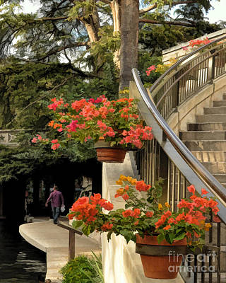 Bougainvilla On Riverwalk Art Print by Josephine Cohn