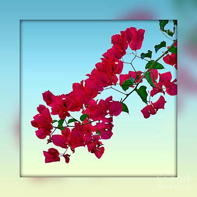 Flowers Of Spring Digital Art - Bougainvillea Art by Kaye Menner