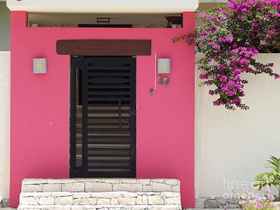 Photograph - Bougainvillea Of Cozumel Mexico by Michael Hoard