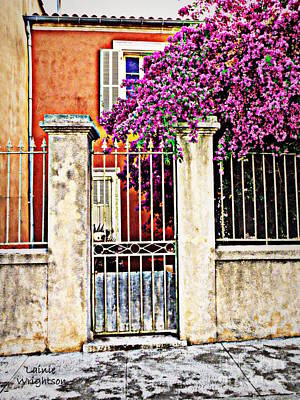 Bougainvillea On The Fence Art Print by Lainie Wrightson