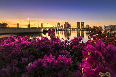 Citiscapes Photograph - Bougainvillea On The West Palm Beach Waterway by Debra and Dave Vanderlaan
