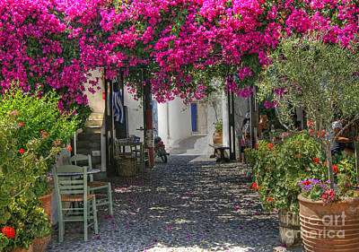 Photograph - Bougainvillea Taverna by David Birchall
