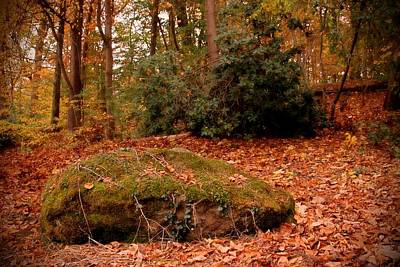 Photograph - Boulder And Autumn Leaves - Holmdel Park by Angie Tirado