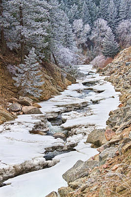 View Photograph - Boulder Creek Frosted Snowy Portrait View by James BO  Insogna