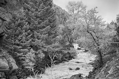 James Insogna Photograph - Boulder Creek Winter Wonderland Black And White by James BO  Insogna