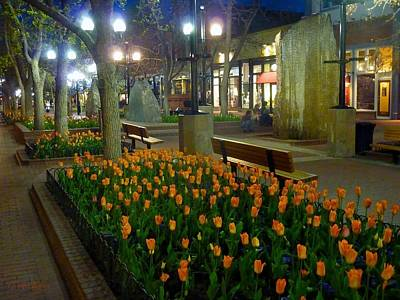 Photograph - Boulder Mall by George Tuffy